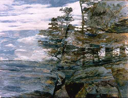 Trees on a Rocky Ledge